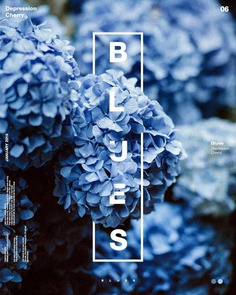 Blue has no dimensions, it is beyond dimensions. – Yves Klein