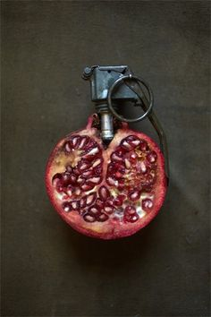 SARAH ILLENBERGER #red #pomegranite #military #seed #photography
