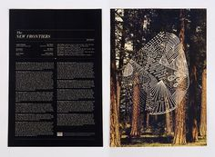 Vinyl Record Sleeve Insert