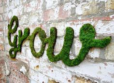 anna garforth moss graffiti designboom #graffiti #moss #typography