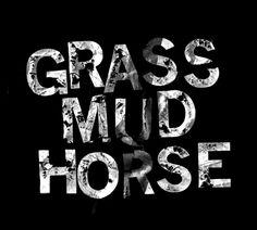 grass mud horse #typography #chinese #slogan