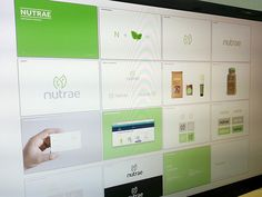 Nutrae #nutrae #guidelines #brands #screenshot #green