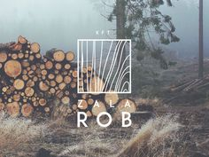 Wood Logo by Hannes Wizany