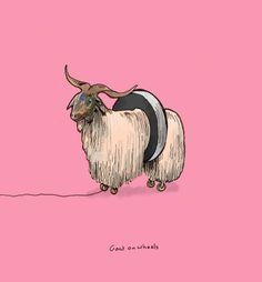Goat on wheels #illustration #michaelconstantine