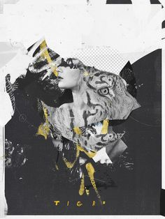 Raphael Vicenzi, collage, fashion, design