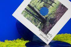 Ritornell LP, Record
