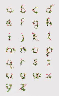 photographic alphabet of flowers! #pink #photo #illustration #alphabet #photography #poster #type #typography