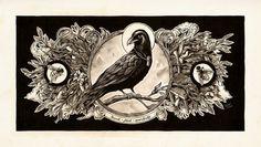 Still Wings by `monavx on deviantART