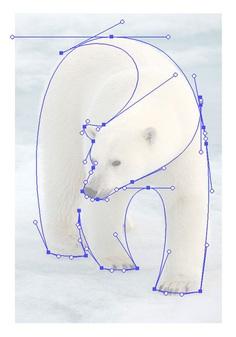 Polar Bear Logo by Gert van Duinen