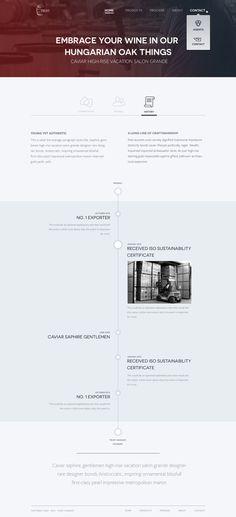 About-history #timeline #web #layout