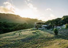 butterfly house Feldman Architecture #architecture