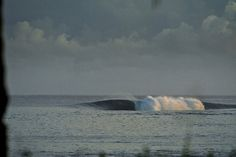 Samoa :: TRENT MITCHELL PHOTOGRAPHY #ocean #surf #wave