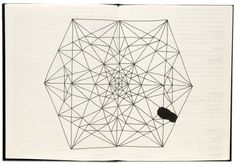 Freaky Fauna's Tumblr #design #geometry #book