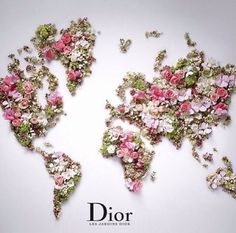 dior. #photography #dior