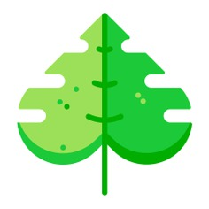 See more icon inspiration related to leaf, plant, farming and gardening, ecology and environment, botanical, gardening, garden, leave, leaves, holidays and nature on Flaticon.