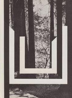 Reith16.jpg (900×1231)