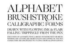 TYPECACHE'S Favorite Fonts of 2013 | TYPECACHE.COM #font #serif #ogg #typeface #typography