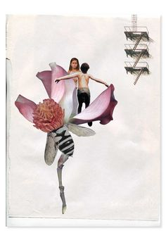 collage, layout, paper, rip, vintage, flower, texture