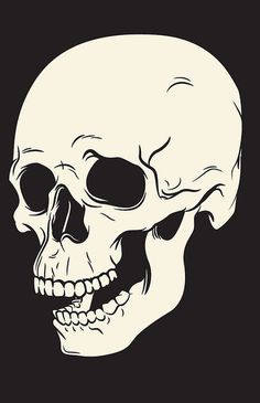 Skull Illustration | Flickr Photo Sharing! #skull