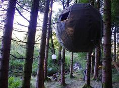 Tree Tents #tent #forest #tree