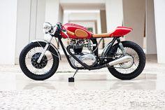 Triumph TR6R #moto