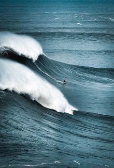preciousandfregilethings: here-i-am-sm:Â faith #ocean #nature #surf #wave