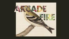 3363214131_29b6270931_o.jpg (Imatge JPEG, 670x377 píxels) #music #color #bird