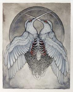 Illustration by Caitlin Hackett #illustration #art