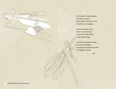 Picture 14 on Behance