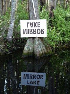 Mirror sign #sign #mirror