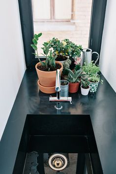 Little #plants on black #integratedsink. #BlackandWhiteApartment by #CrosbyStudios. Photo by #EvgenyEvgrafov.