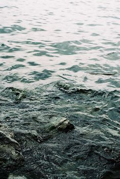 Water (specific inspiration) #nature #pattern #water
