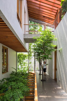 Trees envelop Stepping Park House by VTN Architects