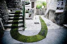 grass carpet winds through a french village #france #carpet #art #grass