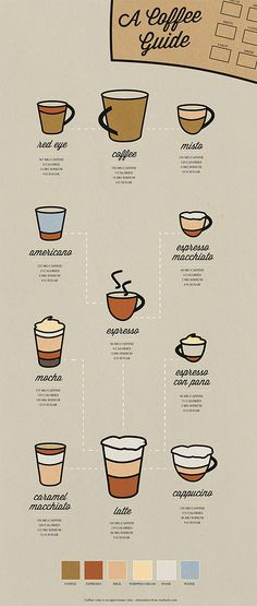 erika westfall | designer | coffee infographic