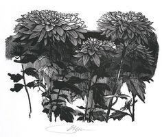 Google Image Result for http://www.vanderbilt.edu/magazines/acorn-chronicle/wp-content/uploads/2010/01/Moser-Chrysanthemums.jpg #baskin #print #block #wood #leonard