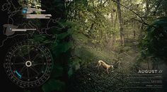 Galgo Español documentary calendar Steffen Heidemann, Design + Concept #infographic #greyhound #calendar #data #visualization