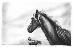 Wall Photos #old #horse #west #just #design #jack #pencil #sketch