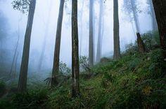 Daniel Dahlmann #inspiration #photography