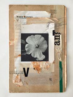 Lee McKenna | PICDIT