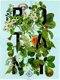 Pears and Flowers #botany #design #floral #poster