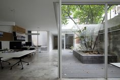 lukstudio forms office around a chimonanthus tree in shanghai #office