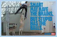 Be Stupid by Diesel   Fubiz™ #ad