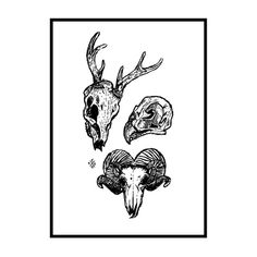 ROWN • Animal skulls screenprint Deer, falcon & ram