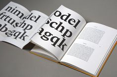 Bram de Does #fonts #typhography #book