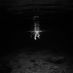 Black and White Underwater Photography by Hengki Koentjoro