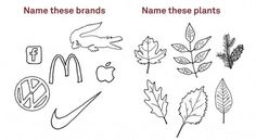 Name These Plants/Brands | Adbusters Culturejammer Headquarters