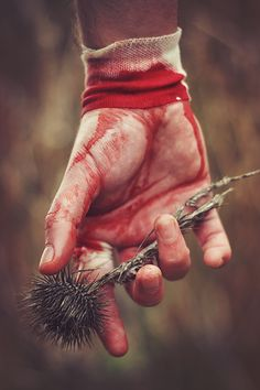 Love hurts #blood #hurts #fingers #photography #thorns #pain #hand #love