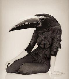 Sara Lindholm #fashion #female #black #bird