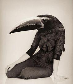 Sara Lindholm #fashion #female #black #bird